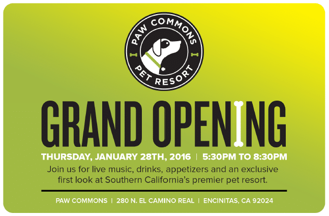 Paw Commons Grand Opening