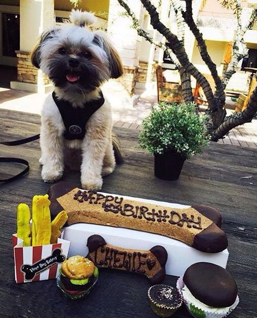 Photo courtesy of Three Dogs Bakery Del Mar