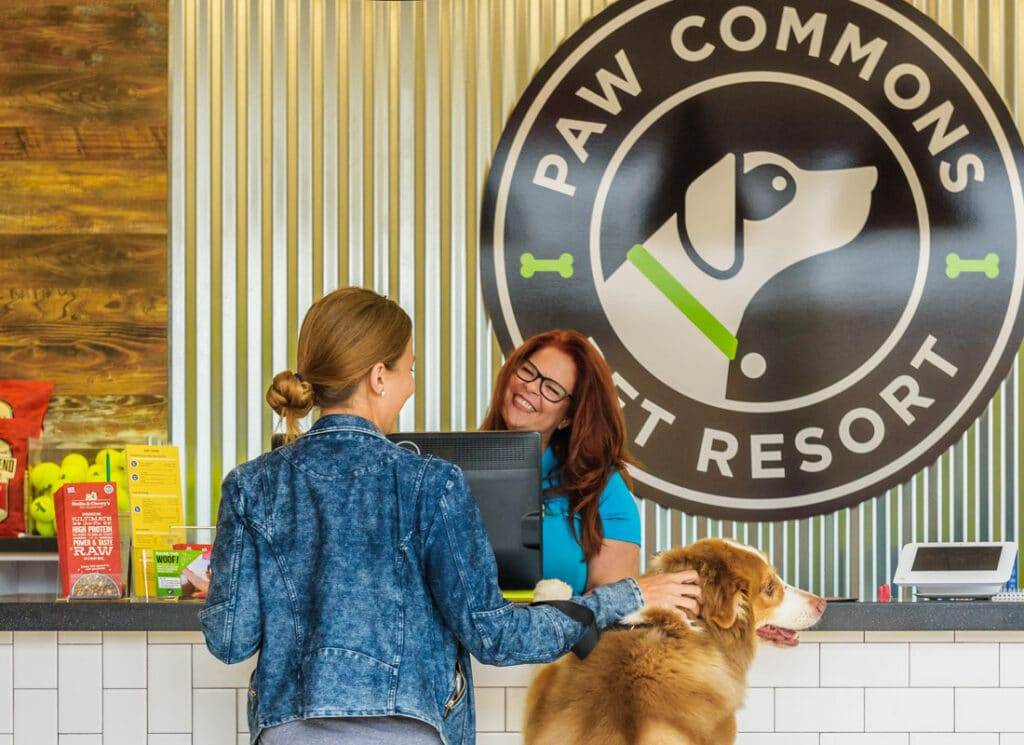 paw commons holiday dog lodging