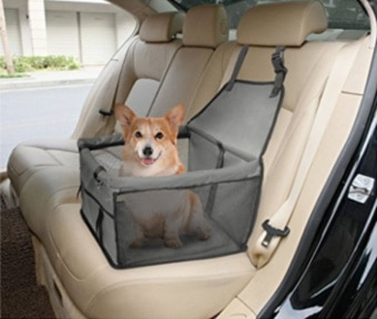 Car Travel With Fido Tips Amp Tricks Paw Commons Pet Resort
