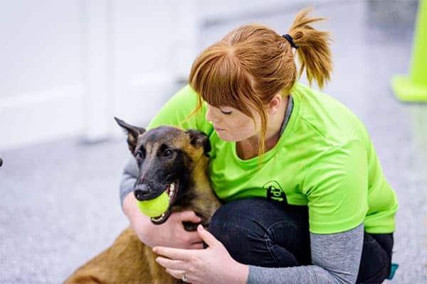 Hillcrest employee cuddling a dog