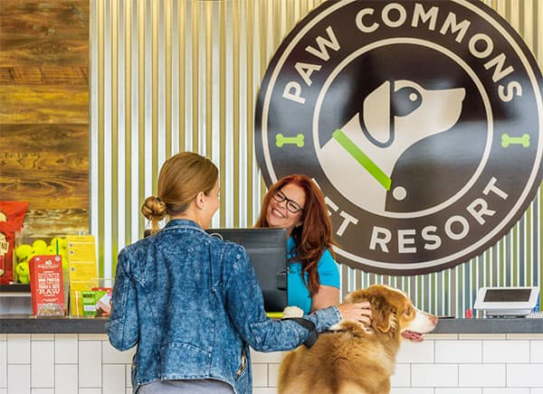 Dog and owner checking into Paw Commons Pet Resort