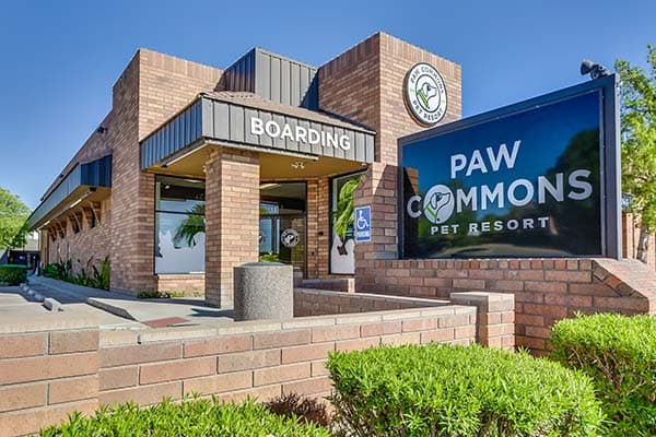 Paw Commons, Gilbert AZ entrance